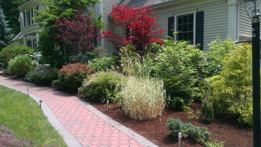 mulch beds with walkway Paradise Landscaping and Tree Removal
