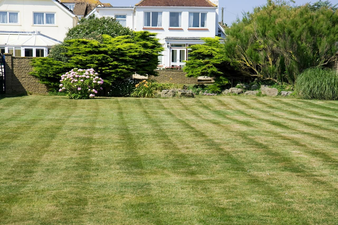 a beautiful lawn is not easy Paradise Landscaping and Tree Removal