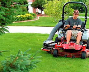 commercial lawn care Paradise Landscaping and Tree Removal