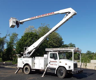 bucket truck for tree trimming and removal Paradise Landscaping and Tree Removal