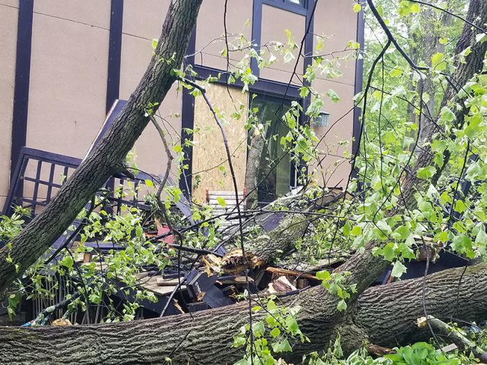 Damage from Hamden, CT tornado tree fall.