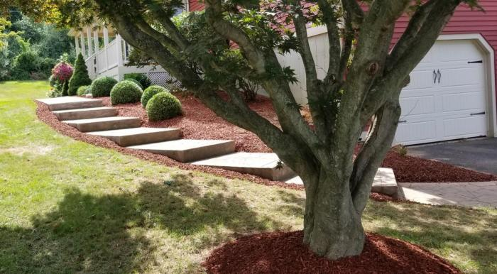 We can help with your total landscape; here we created mulched beds, edging, decorative plantings, healthy lawn and stone steps.