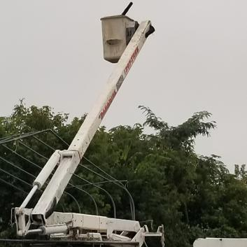 Paradise Landscaping & Tree Removal's bucket truck reaches the tallest limbs